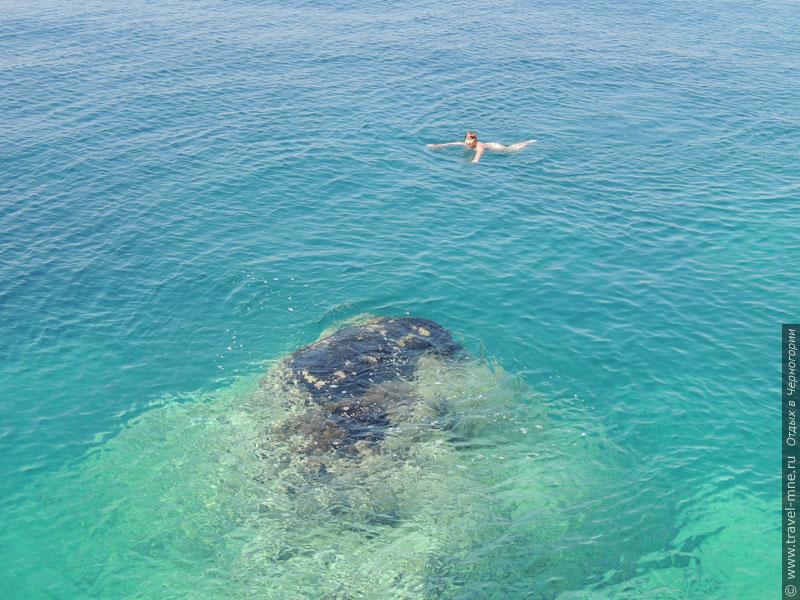 Морская вода у побережья Добра Вода прозрачная и очень чистая