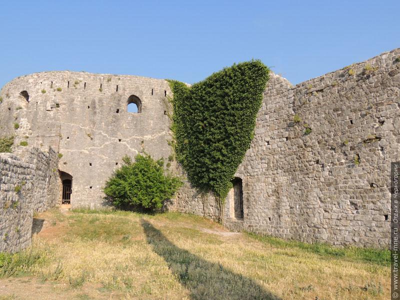 Некоторые городские стены давно заросли многочисленными растениями