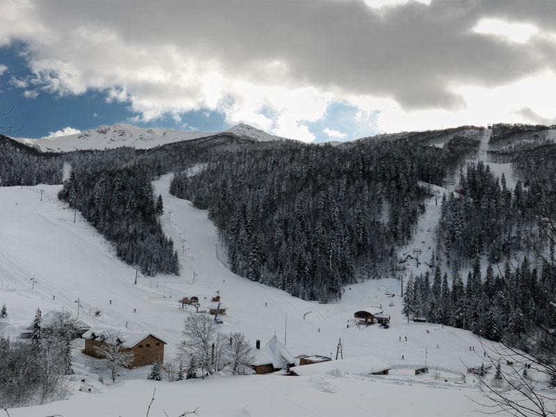 Трассы горнолыжного курорта в Колашине проложены прямо через лес