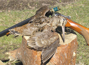 Охота в Черногории