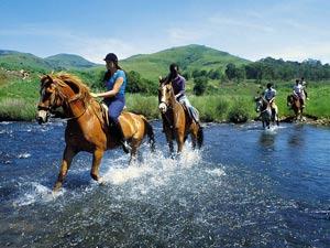 Катание на лошадях в Черногории