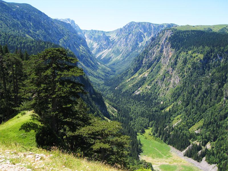 Река Сушица часто исчезает в каньоне, уступая свое место красивой зеленой растительности