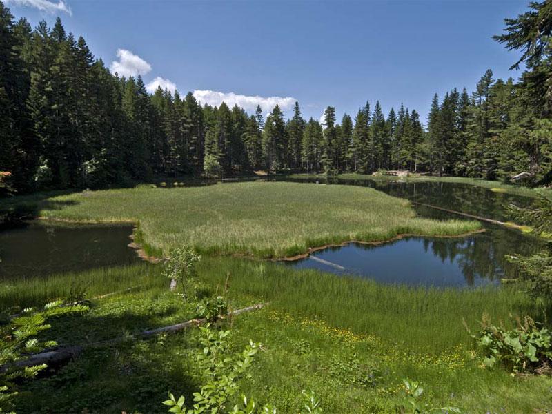 """Виситорское озеро знаменито своим """"плавающим островом"""""""