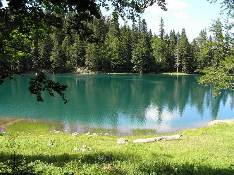 Вода Забойского озера в окружении хвойных лесов выглядит изумрудно-зеленой