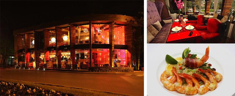 Perla Café Lounge & Restaurant
