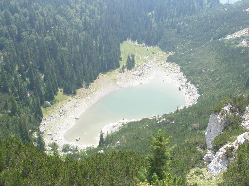 Тополиное озеро в окружении тополиного леса