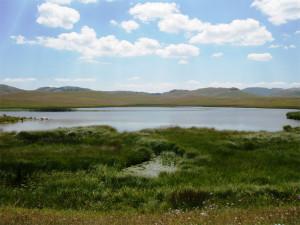 Рыбье озеро