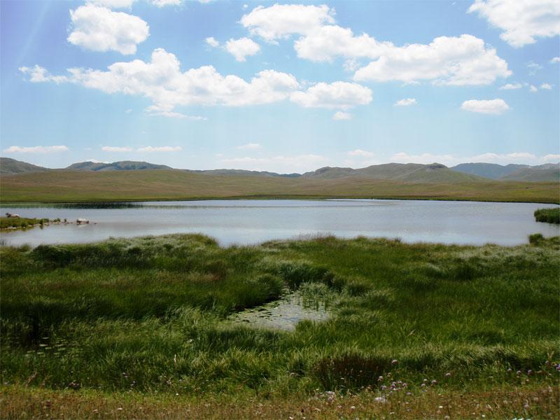 Свое название Рыбье озеро получило из-за обилия в нем крупной рыбы