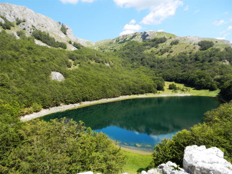 Большое Стабанское озеро выделяется голубым цветом воды на фоне окружающих его зеленых лесов