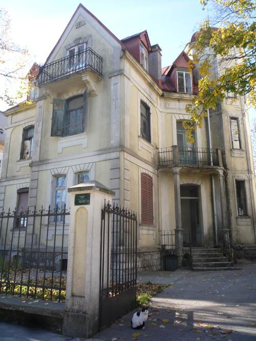Дом Вуйовича - самый европейский из всех черногорских частных домов