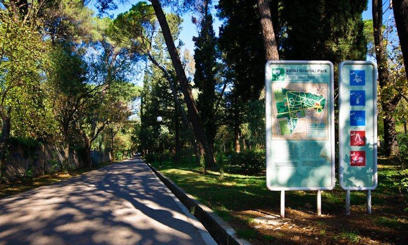 Растения для тиватского парка были привезены со всего мира