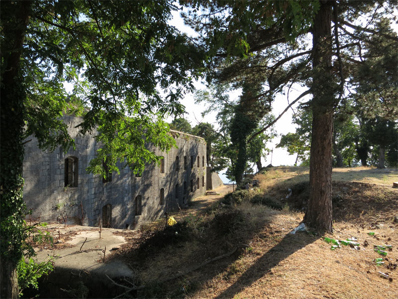 Крепость Врмац на вершине горы со всех сторон окружает сосновый лес